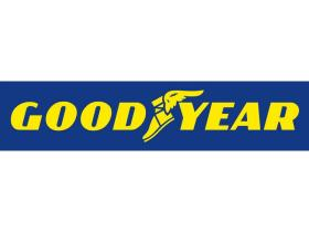 Goodyear 510053 - CUB.205/55 ZR 16 91W EAGLE F1 GS-D3